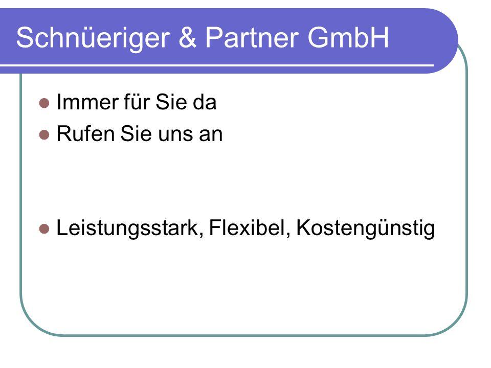 Schnüeriger & Partner GmbH Immer für Sie da Rufen Sie uns an Leistungsstark, Flexibel, Kostengünstig