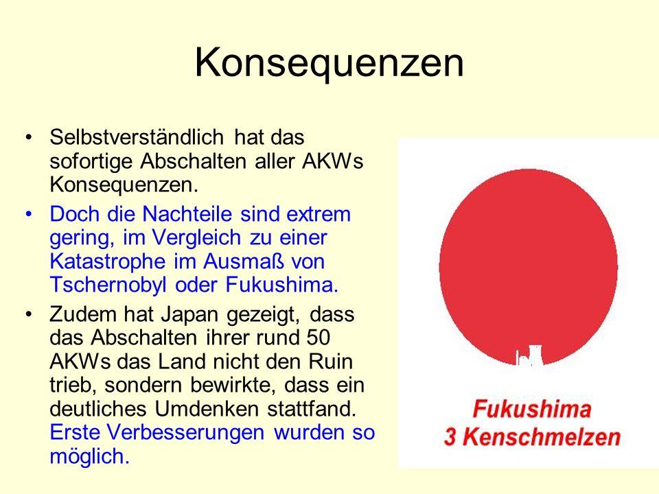 Vision Das Parlament beschließt: Die Schweiz wird atomstromfrei .
