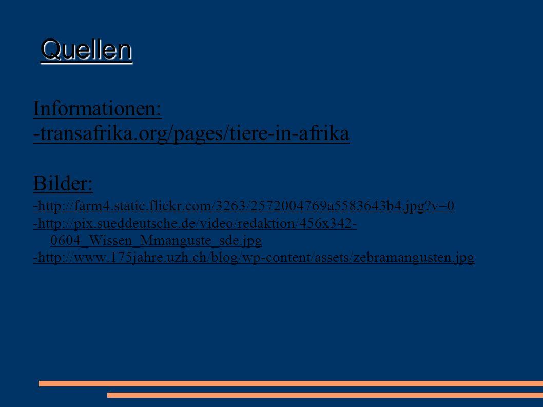 Quellen Informationen: -transafrika.org/pages/tiere-in-afrika Bilder: - http://farm4.static.flickr.com/3263/2572004769a5583643b4.jpg?v=0 -http://pix.s