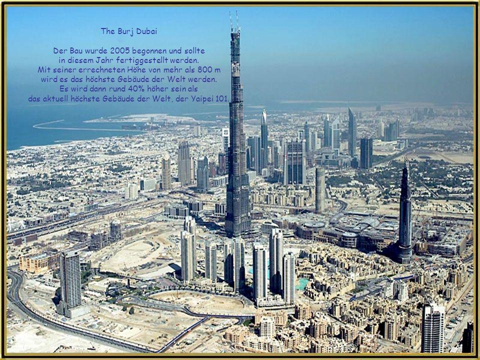 Mehrere der höchsten Gebäude der Welt, wie das Ocean Heights und The Princess Tower, die zu den grössten Wohnblocks der Welt gehören, werden am Hafen