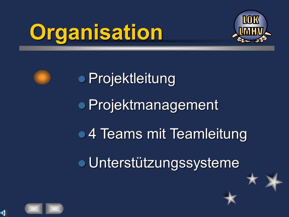 Projektleitung Projektleitung 4 Teams mit Teamleitung 4 Teams mit Teamleitung Unterstützungssysteme Unterstützungssysteme Organisation Projektmanageme