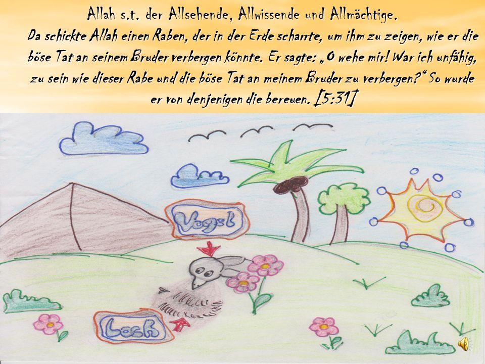 Allah s.t.der Allsehende, Allwissende und Allmächtige.