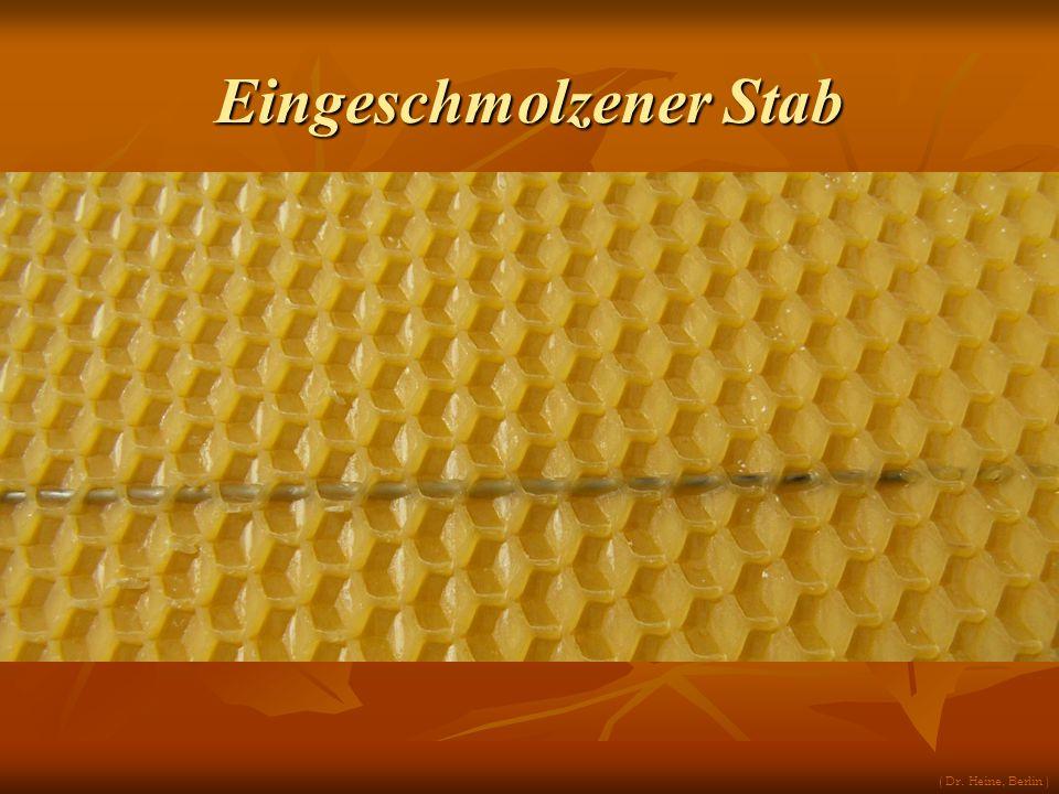 Eingeschmolzener Stab ( Dr. Heine, Berlin )