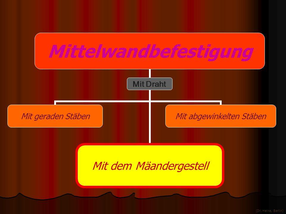 Mittelwandbefestigung Mit geraden StäbenMit dem MäandergestellMit abgewinkelten Stäben Mit Draht (Dr. Heine, Berlin)