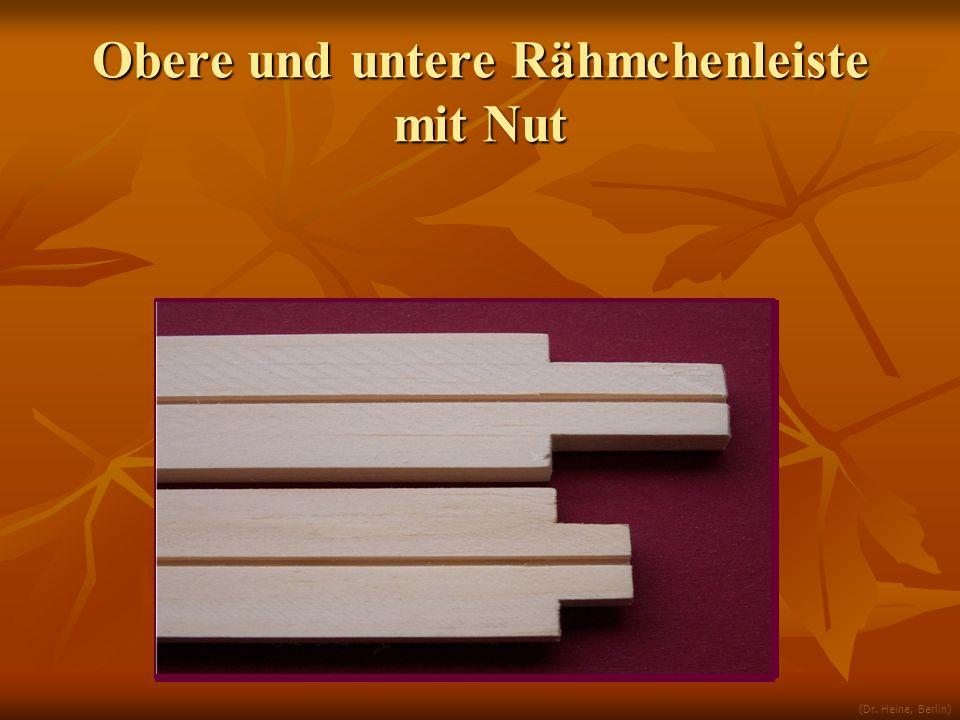 Obere und untere Rähmchenleiste mit Nut (Dr. Heine, Berlin)