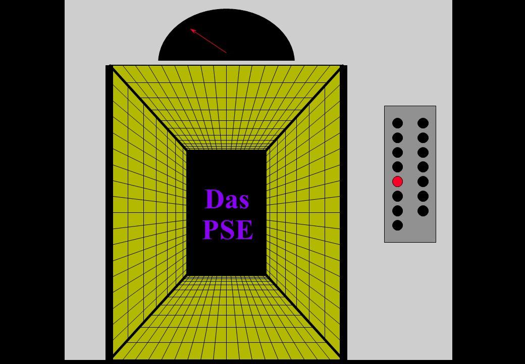 Das PSE