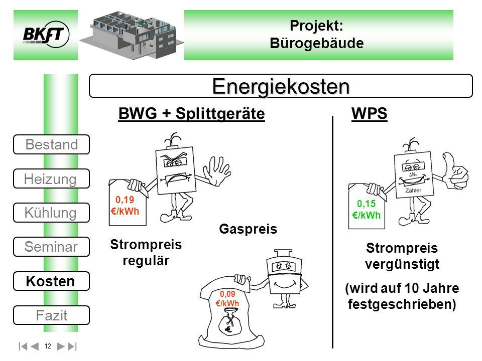 12 Projekt: Bürogebäude Energiekosten 0,19 /kWh 0,09 /kWh 0,15 /kWh Strompreis vergünstigt (wird auf 10 Jahre festgeschrieben) Gaspreis Strompreis reg