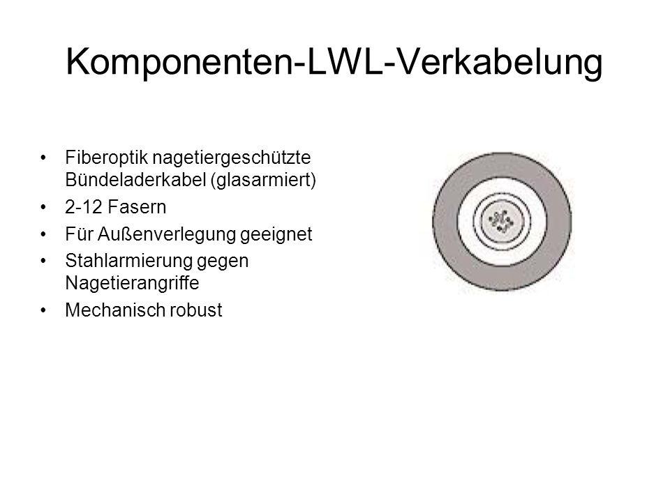Komponenten-LWL-Verkabelung Fiberoptik nagetiergeschützte Bündeladerkabel (glasarmiert) 2-12 Fasern Für Außenverlegung geeignet Stahlarmierung gegen N