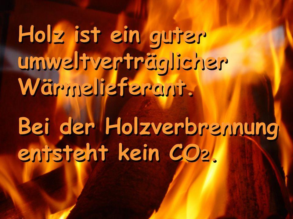 Holz ist ein guter umweltverträglicher Wärmelieferant. Bei der Holzverbrennung entsteht kein CO 2. Holz ist ein guter umweltverträglicher Wärmeliefera