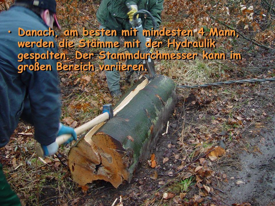 Die Hydraulik wird an den Stammenden angesetzt.Es wird der Hydraulikkeil in den Stamm gedrückt.
