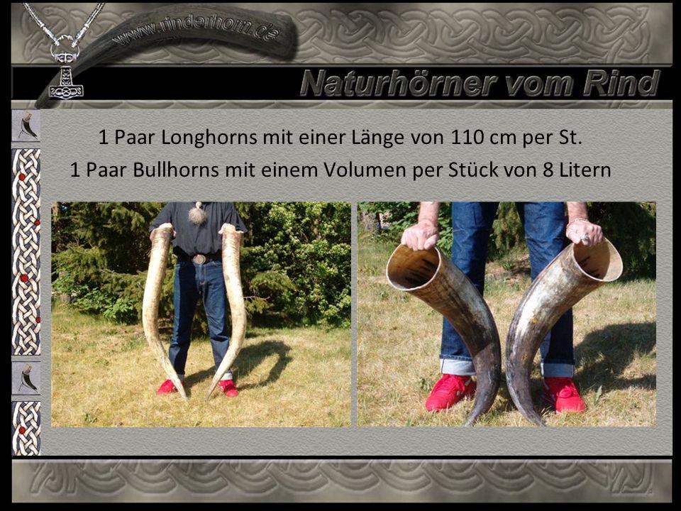 1 Paar Longhorns mit einer Länge von 110 cm per St. 1 Paar Bullhorns mit einem Volumen per Stück von 8 Litern