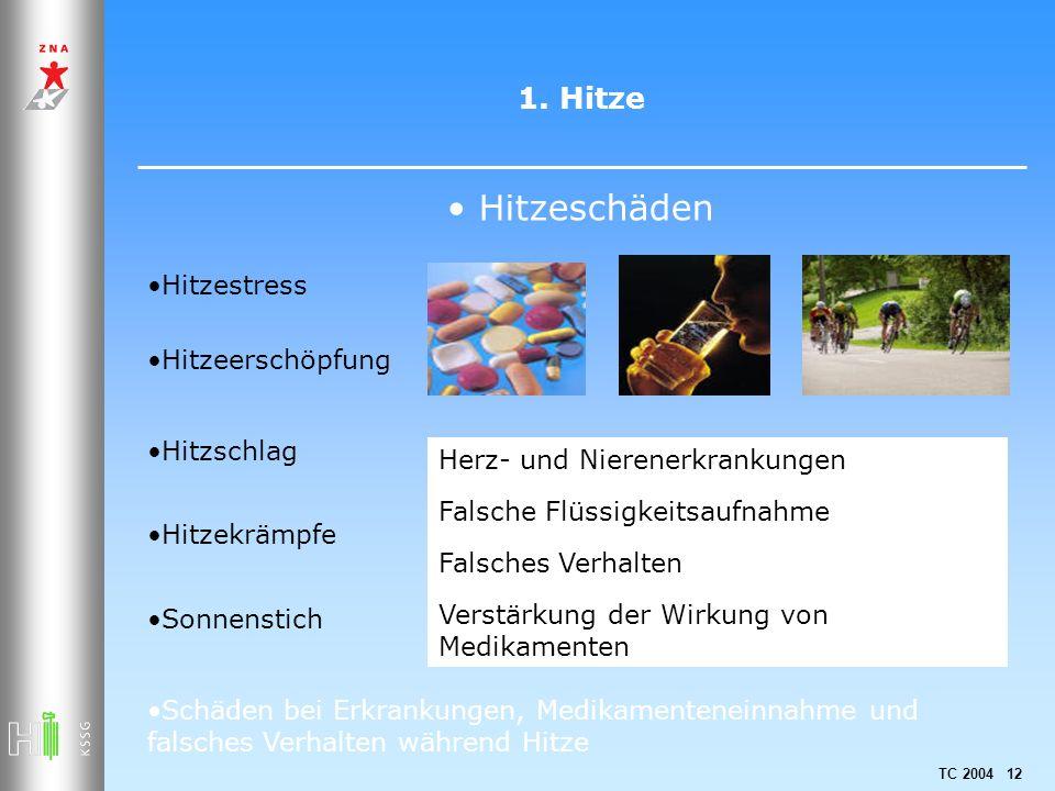 TC 2004 12 1. Hitze Hitzeschäden Hitzestress Hitzeerschöpfung Hitzschlag Hitzekrämpfe Sonnenstich Schäden bei Erkrankungen, Medikamenteneinnahme und f