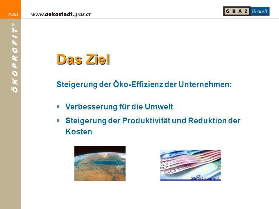 Folie 2 Ö K O P R O F I T ® Folie 2 Das Ziel Steigerung der Öko-Effizienz der Unternehmen: Verbesserung für die Umwelt Steigerung der Produktivität un