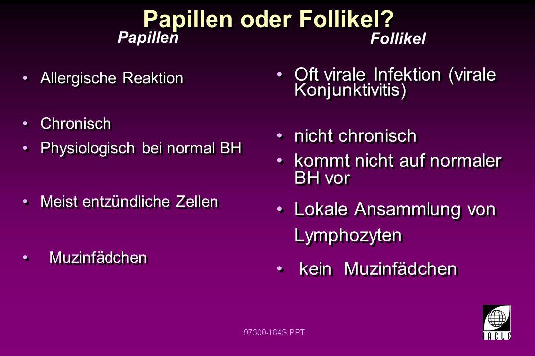 97300-184S.PPT Papillen oder Follikel? Allergische Reaktion Chronisch Physiologisch bei normal BH Meist entzündliche Zellen Muzinfädchen Allergische R