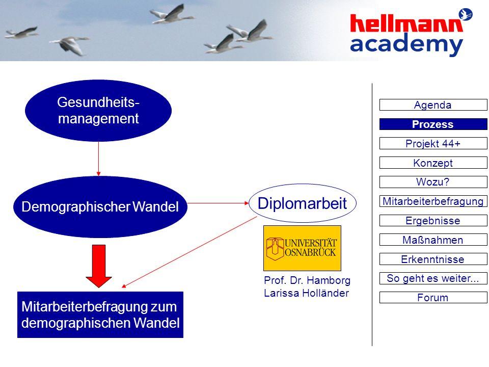 Gesundheits- management Demographischer Wandel Diplomarbeit Mitarbeiterbefragung zum demographischen Wandel Prof. Dr. Hamborg Larissa Holländer Agenda