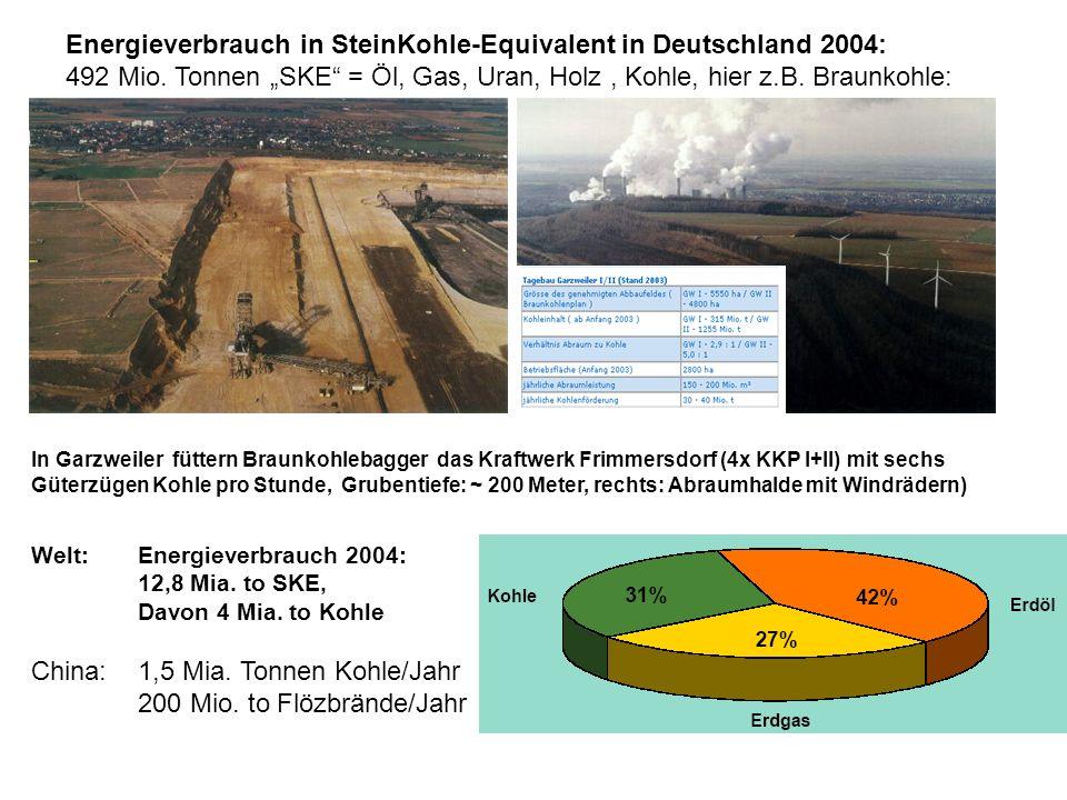 Ausgangswert im Jahr 1850: 250 ppm, heute: > 380 ppm, Anstieg pro Jahr: 2 ppm, 2100: 500 ppm .