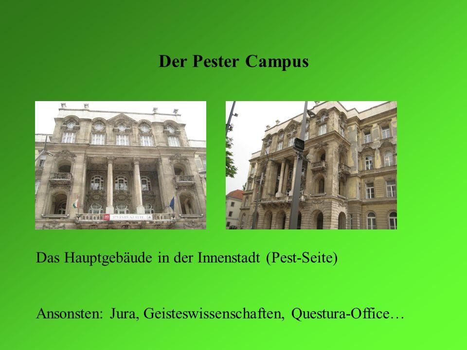 Der Pester Campus Das Hauptgebäude in der Innenstadt (Pest-Seite) Ansonsten: Jura, Geisteswissenschaften, Questura-Office…