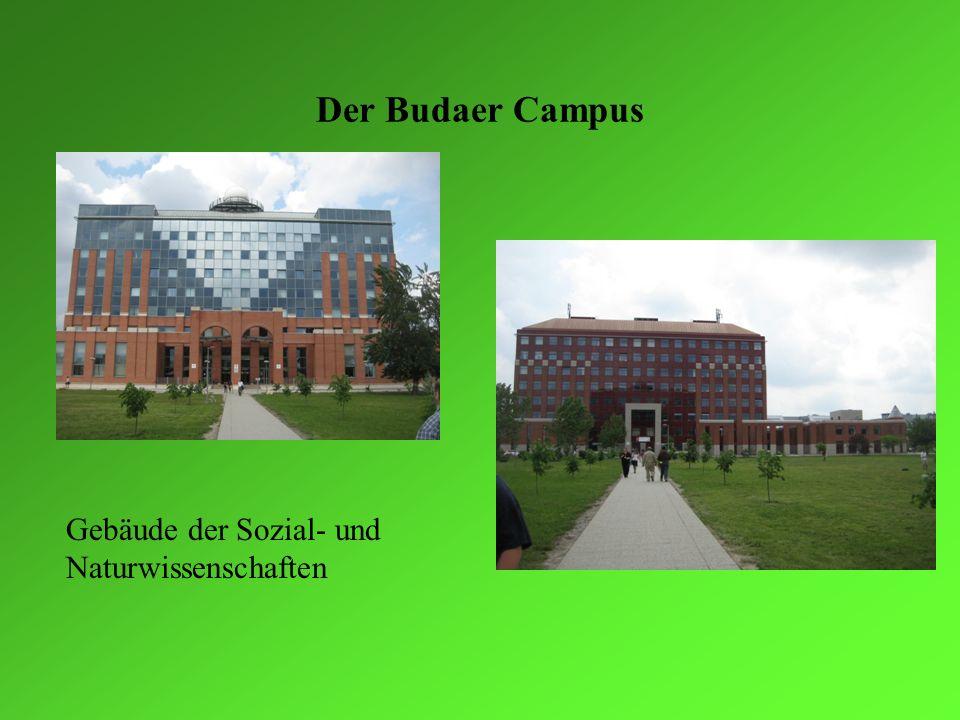 Der Budaer Campus II Weitere neue Gebäude entstehen… … dennoch ist es hier auch richtig grün… … und die Architekten haben sich wirklich Mühe gegeben.