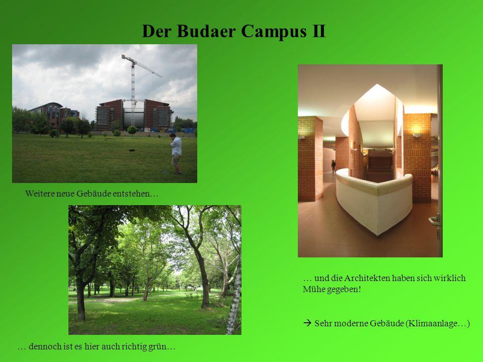 Der Budaer Campus II Weitere neue Gebäude entstehen… … dennoch ist es hier auch richtig grün… … und die Architekten haben sich wirklich Mühe gegeben!
