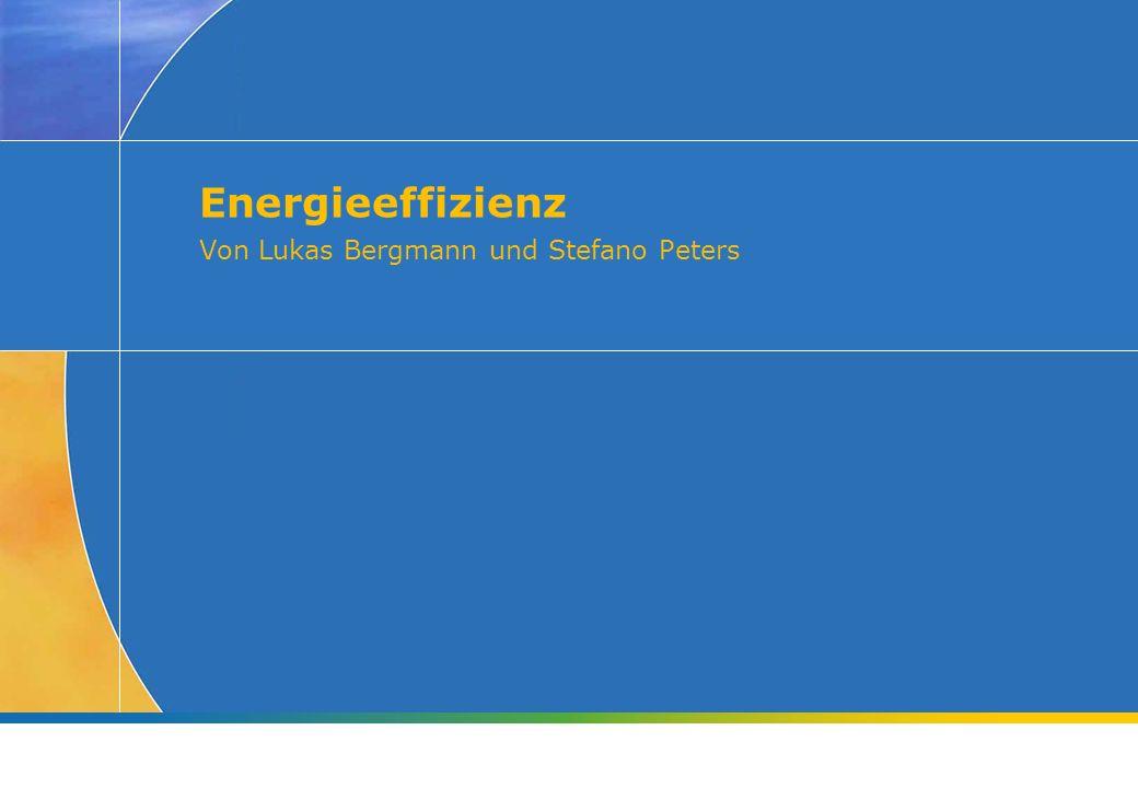 Energieeffizienz Von Lukas Bergmann und Stefano Peters
