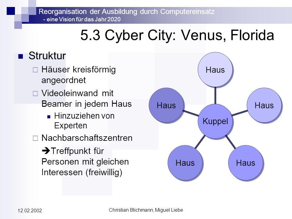 Reorganisation der Ausbildung durch Computereinsatz - eine Vision für das Jahr 2020 Christian Blichmann, Miguel Liebe 12.02.2002 5.3 Cyber City: Venus