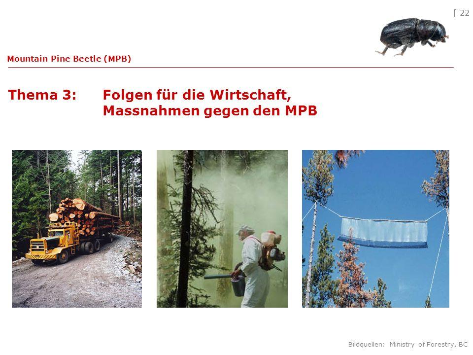 [ 22 Thema 3: Folgen für die Wirtschaft, Massnahmen gegen den MPB Mountain Pine Beetle (MPB) Bildquellen: Ministry of Forestry, BC