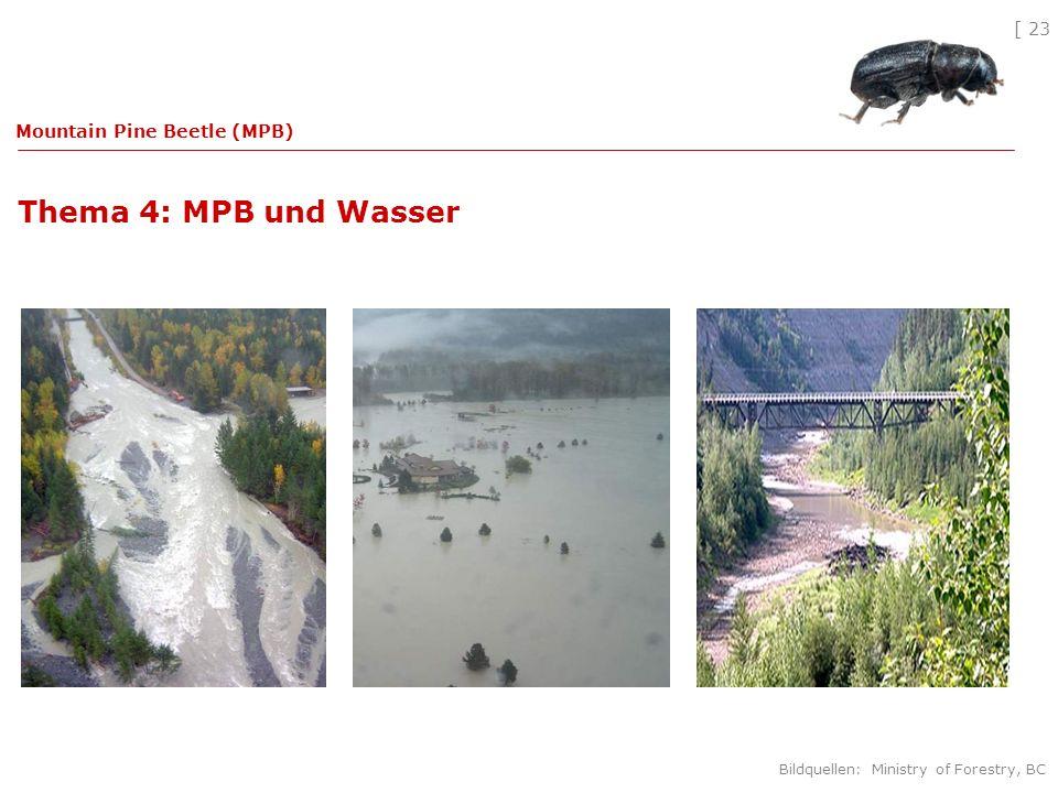 [ 23 Thema 4: MPB und Wasser Mountain Pine Beetle (MPB) Bildquellen: Ministry of Forestry, BC