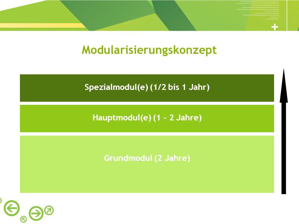 Grundmodul (2 Jahre) Hauptmodul(e) (1 - 2 Jahre) Spezialmodul(e) (1/2 bis 1 Jahr) Modularisierungskonzept