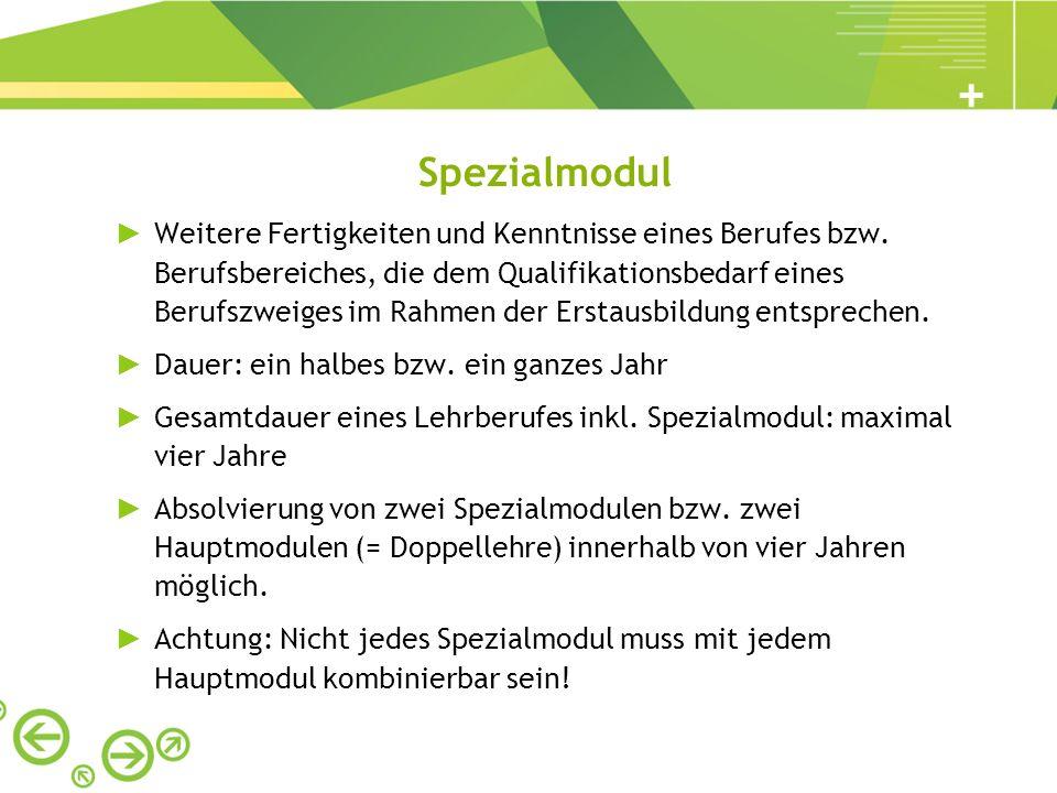 Spezialmodul Weitere Fertigkeiten und Kenntnisse eines Berufes bzw. Berufsbereiches, die dem Qualifikationsbedarf eines Berufszweiges im Rahmen der Er