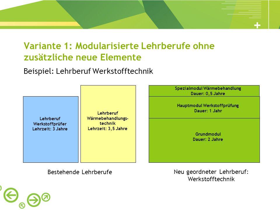 Variante 1: Modularisierte Lehrberufe ohne zusätzliche neue Elemente Beispiel: Lehrberuf Werkstofftechnik Lehrberuf Werkstoffprüfer Lehrzeit: 3 Jahre
