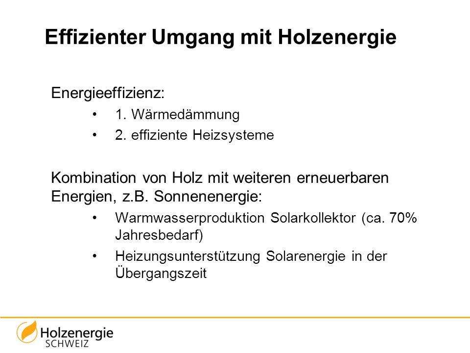 Effizienter Umgang mit Holzenergie Energieeffizienz: 1. Wärmedämmung 2. effiziente Heizsysteme Kombination von Holz mit weiteren erneuerbaren Energien