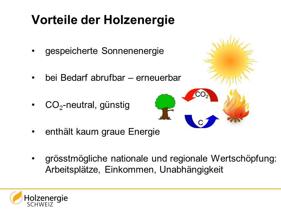 Vorteile der Holzenergie gespeicherte Sonnenenergie bei Bedarf abrufbar – erneuerbar CO 2 -neutral, günstig enthält kaum graue Energie grösstmögliche