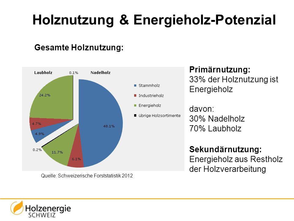 Primärnutzung: 33% der Holznutzung ist Energieholz davon: 30% Nadelholz 70% Laubholz Sekundärnutzung: Energieholz aus Restholz der Holzverarbeitung Qu