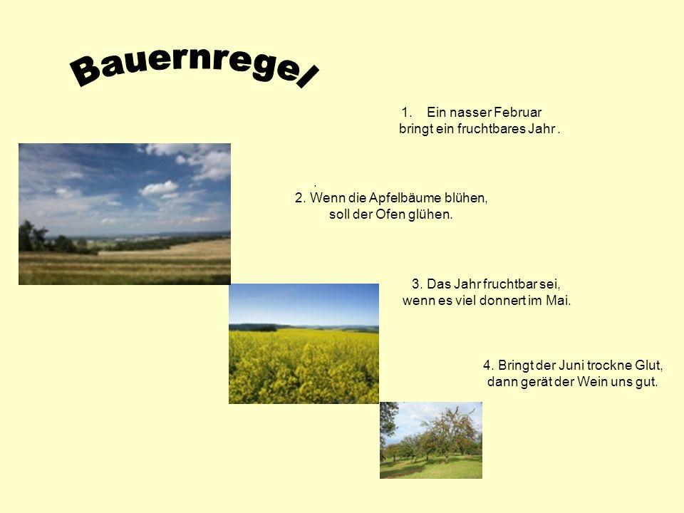 . 3. Das Jahr fruchtbar sei, wenn es viel donnert im Mai. 4. Bringt der Juni trockne Glut, dann gerät der Wein uns gut. 1.Ein nasser Februar bringt ei