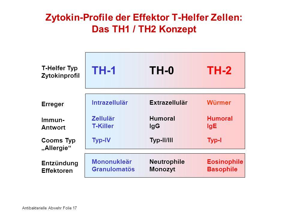 Antibakterielle Abwehr Folie 17 ZellulärHumoralHumoral T-KillerIgGIgE IntrazellulärExtrazellulärWürmer Typ-IVTyp-II/IIITyp-I MononukleärNeutrophileEos