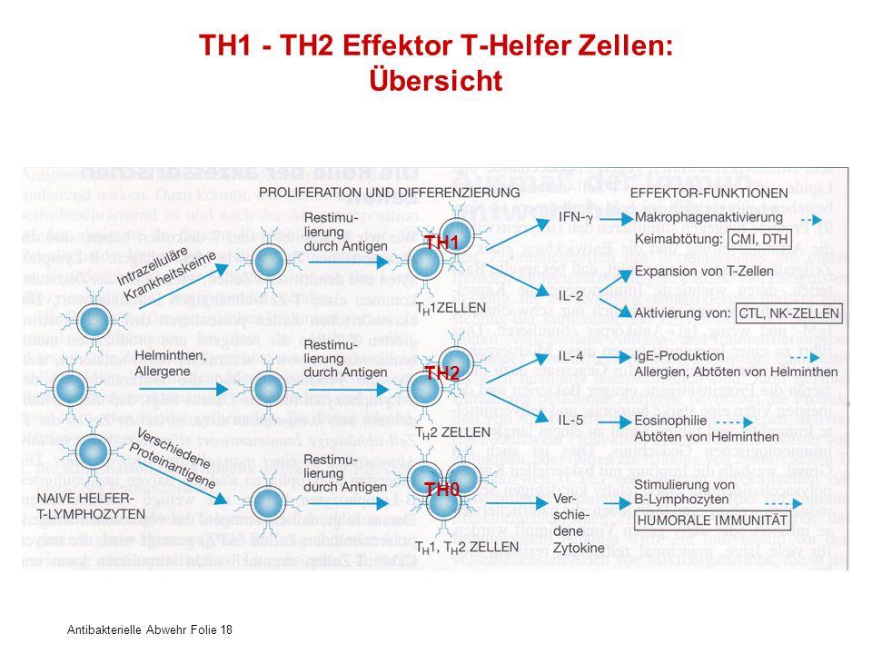 Antibakterielle Abwehr Folie 18 TH1 - TH2 Effektor T-Helfer Zellen: Übersicht TH1 TH0 TH2