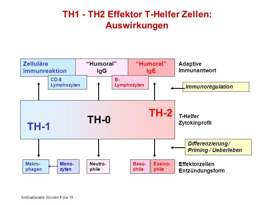 Antibakterielle Abwehr Folie 19 TH1 - TH2 Effektor T-Helfer Zellen: Auswirkungen Zelluläre Immunreaktion Humoral IgG Humoral IgE T-Helfer Zytokinprofi