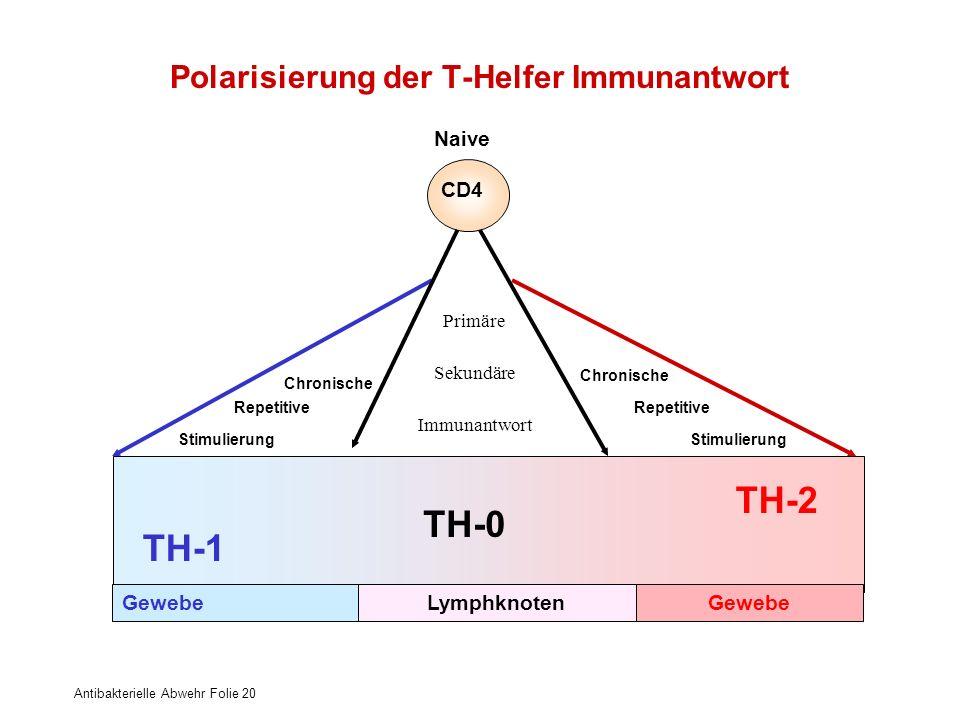 Antibakterielle Abwehr Folie 20 Primäre Sekundäre Immunantwort Chronische Repetitive Stimulierung TH-2 TH-1 TH-0 GewebeLymphknotenGewebe Chronische Re