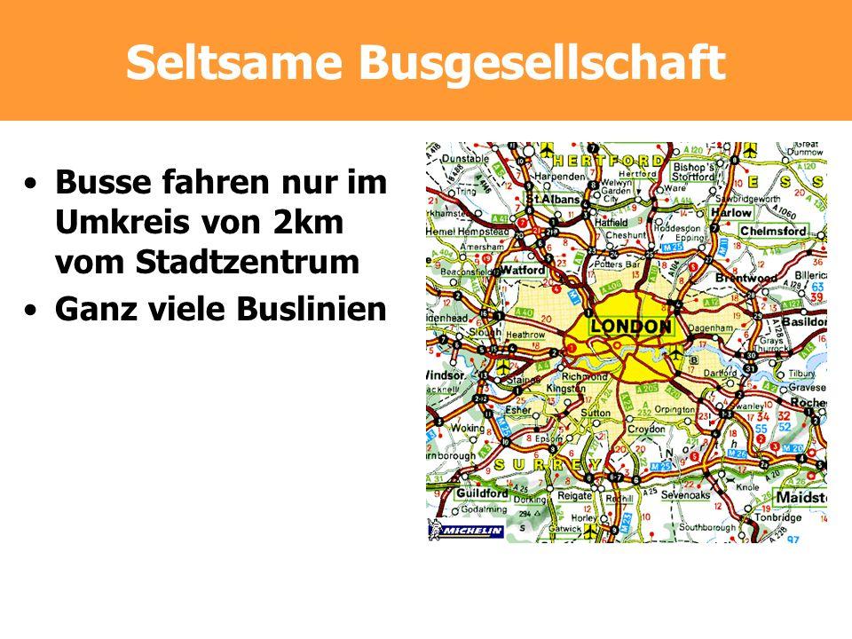 Seltsame Busgesellschaft Busse fahren nur im Umkreis von 2km vom Stadtzentrum Ganz viele Buslinien