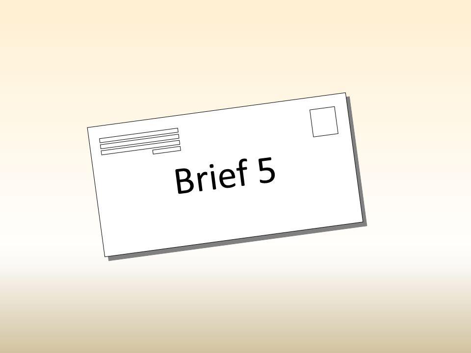 Brief 5