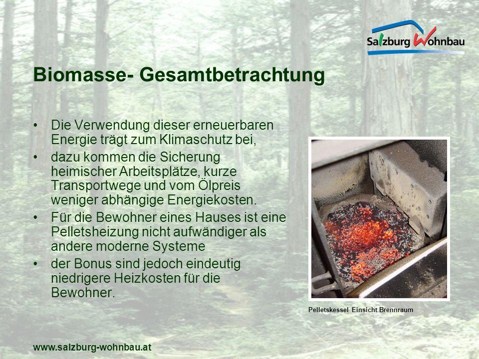 www.salzburg-wohnbau.at Biomasse- Gesamtbetrachtung Die Verwendung dieser erneuerbaren Energie trägt zum Klimaschutz bei, dazu kommen die Sicherung he