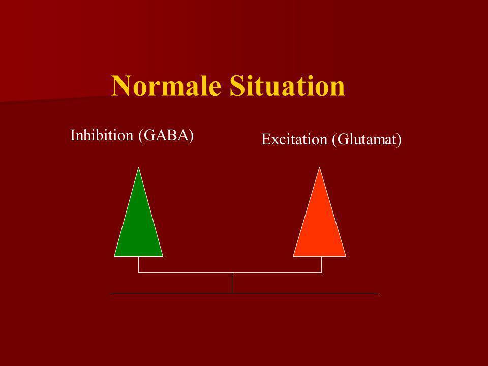 Excitation (Glutamat)Inhibition (GABA) Der Anfall