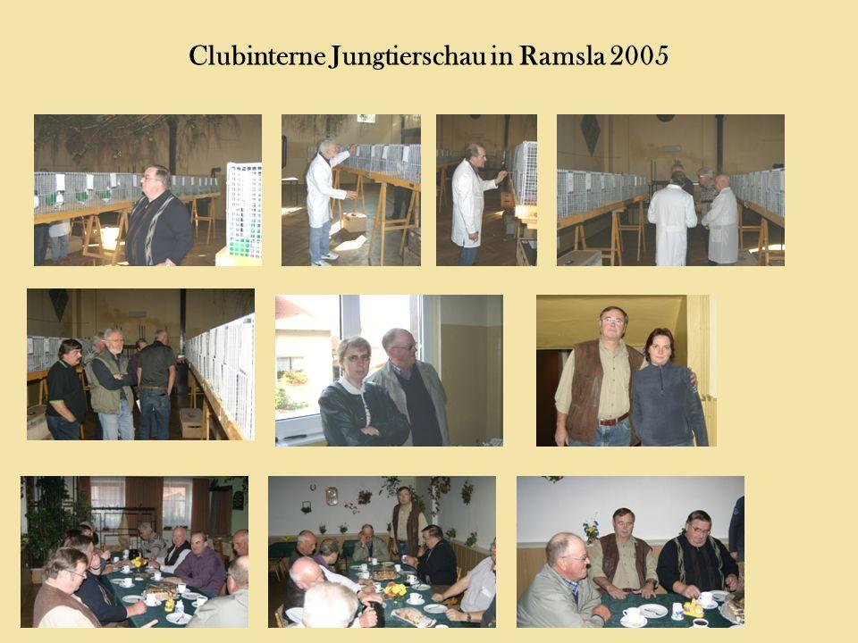 Clubinterne Jungtierschau in Ramsla 2005