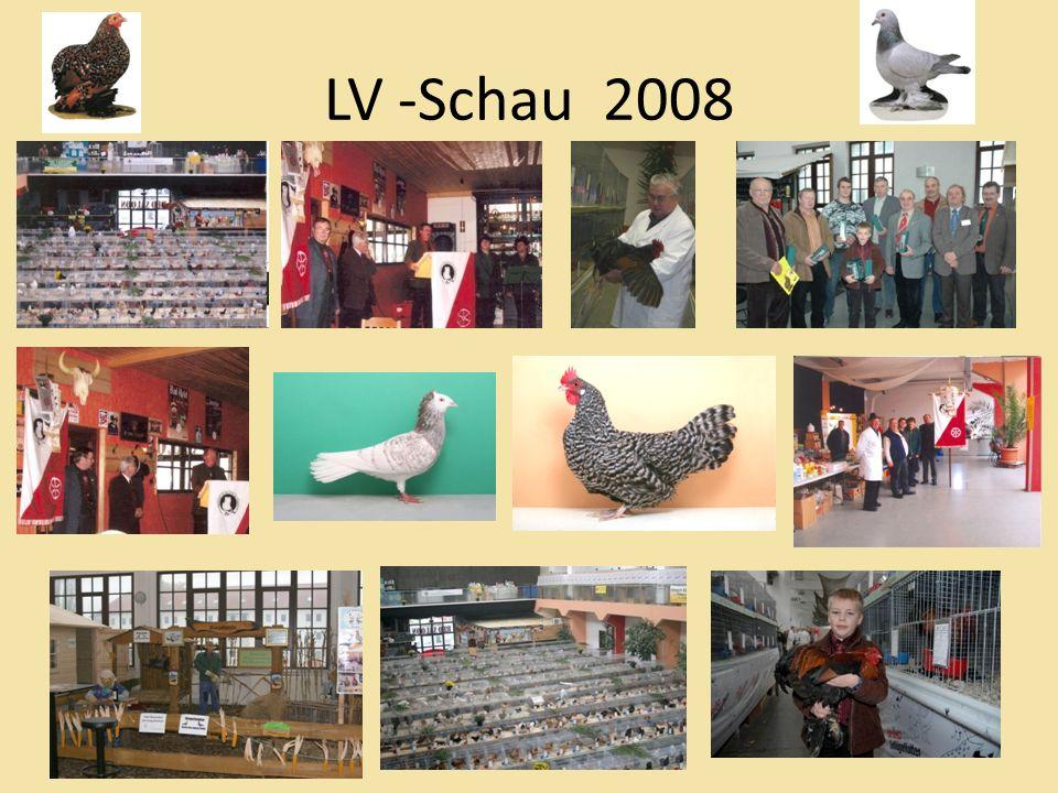 LV -Schau 2008