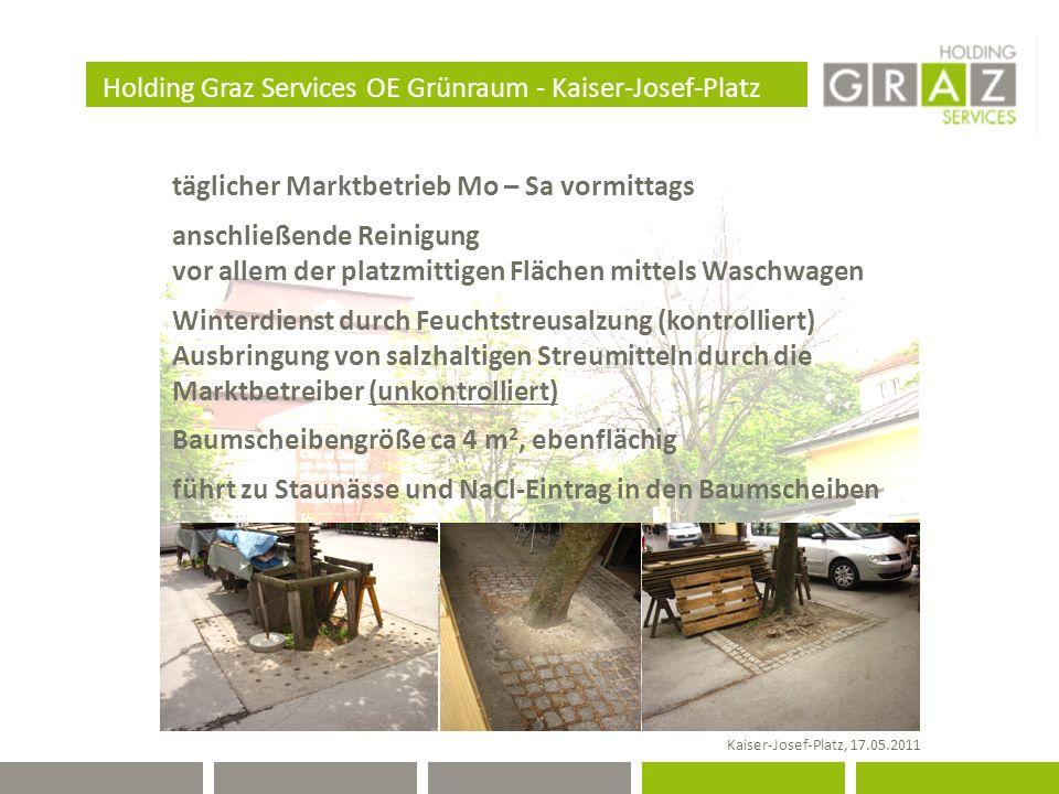 Holding Graz Services OE Grünraum - Kaiser-Josef-Platz Kaiser-Josef-Platz, 17.05.2011 täglicher Marktbetrieb Mo – Sa vormittags anschließende Reinigung vor allem der platzmittigen Flächen mittels Waschwagen Winterdienst durch Feuchtstreusalzung (kontrolliert) Ausbringung von salzhaltigen Streumitteln durch die Marktbetreiber (unkontrolliert) Baumscheibengröße ca 4 m 2, ebenflächig führt zu Staunässe und NaCl-Eintrag in den Baumscheiben