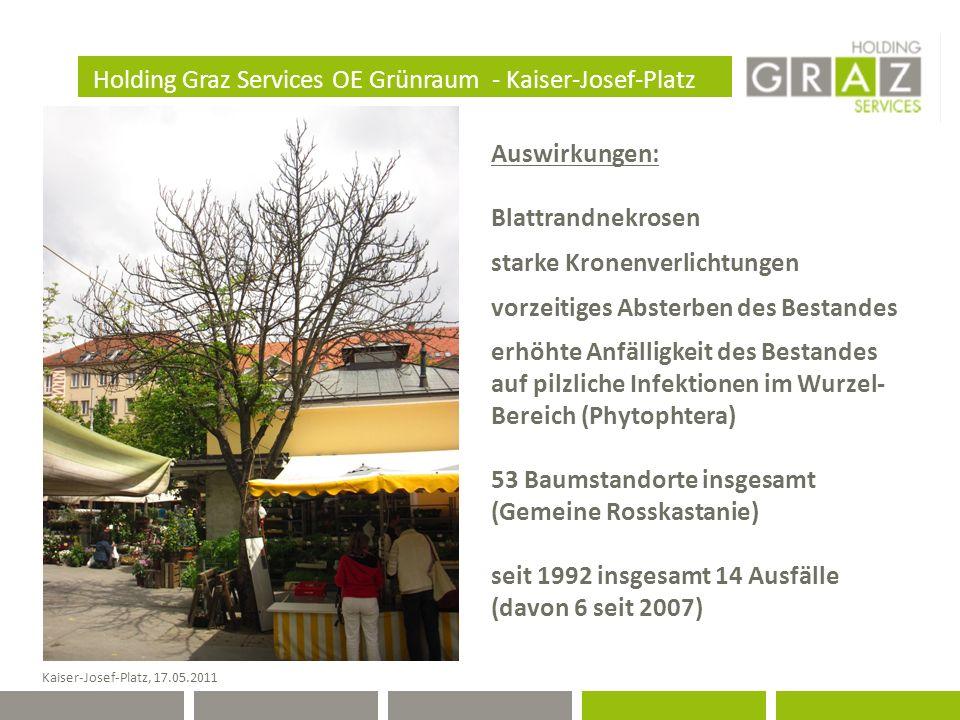 Holding Graz Services OE Grünraum - Kaiser-Josef-Platz Kaiser-Josef-Platz, 17.05.2011 Auswirkungen: Blattrandnekrosen starke Kronenverlichtungen vorzeitiges Absterben des Bestandes erhöhte Anfälligkeit des Bestandes auf pilzliche Infektionen im Wurzel- Bereich (Phytophtera) 53 Baumstandorte insgesamt (Gemeine Rosskastanie) seit 1992 insgesamt 14 Ausfälle (davon 6 seit 2007)