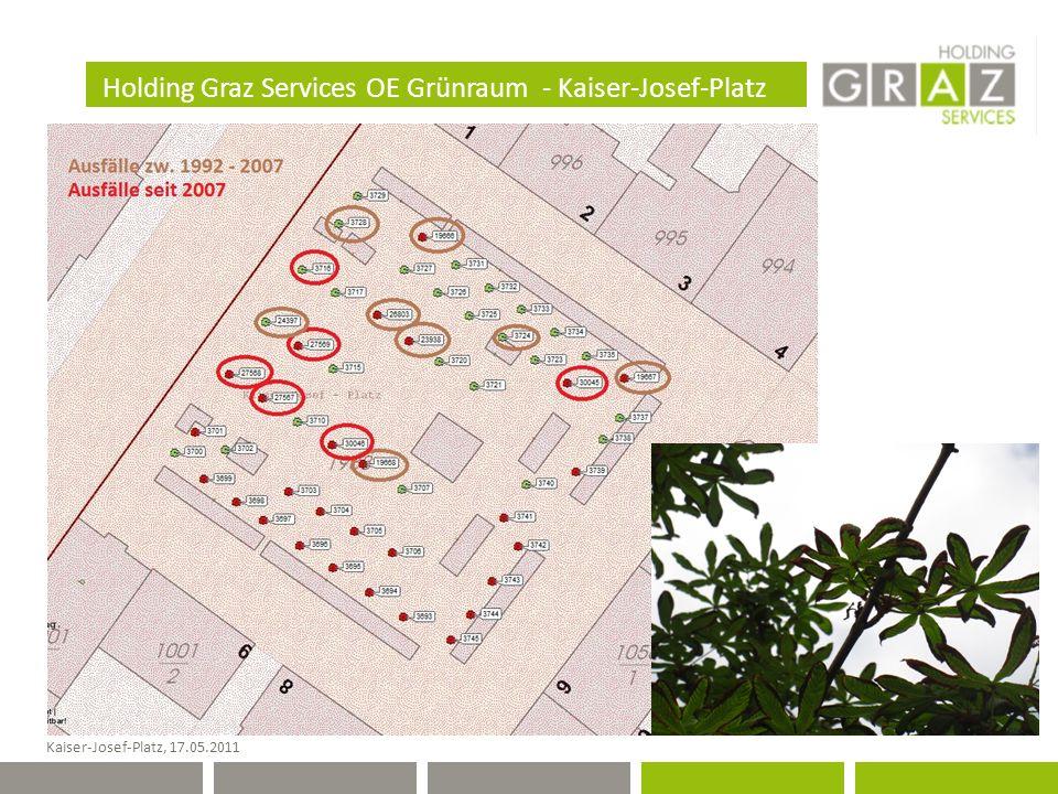 Holding Graz Services OE Grünraum - Kaiser-Josef-Platz Kaiser-Josef-Platz, 17.05.2011
