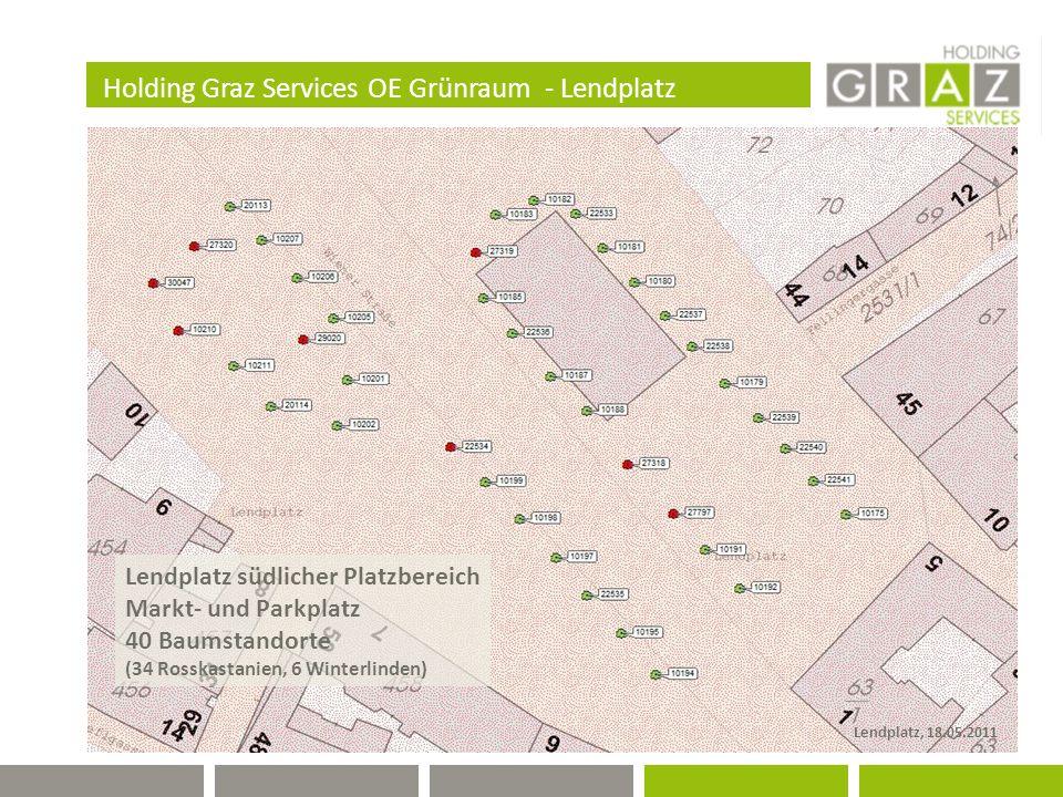 Holding Graz Services OE Grünraum - Lendplatz Lendplatz südlicher Platzbereich Markt- und Parkplatz 40 Baumstandorte (34 Rosskastanien, 6 Winterlinden) Lendplatz, 18.05.2011