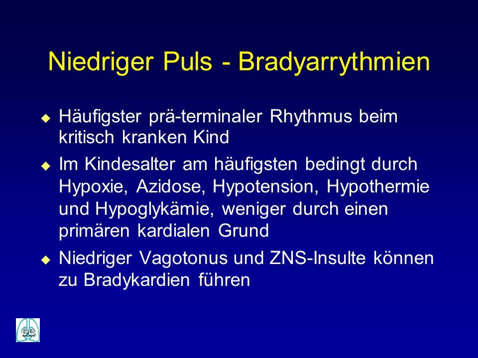 Niedriger Puls - Bradyarrythmien u Häufigster prä-terminaler Rhythmus beim kritisch kranken Kind u Im Kindesalter am häufigsten bedingt durch Hypoxie, Azidose, Hypotension, Hypothermie und Hypoglykämie, weniger durch einen primären kardialen Grund u Niedriger Vagotonus und ZNS-Insulte können zu Bradykardien führen