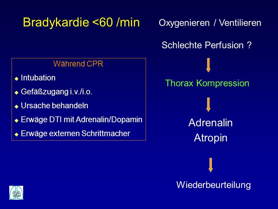 Bradykardie <60 /min Schlechte Perfusion ? Adrenalin Atropin Wiederbeurteilung Thorax Kompression Oxygenieren / Ventilieren Während CPR u Intubation u